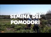 SfruttaZero2017 | Semina dei pomodori